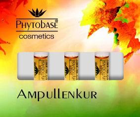 Phytobase Herbst-Box, 3 x 2 ml