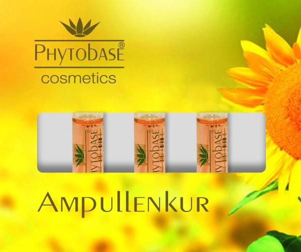 Phytobase Ampullen Sommer Box, 3 x 2 ml